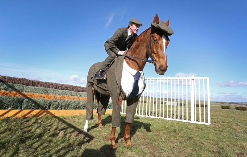 Horse in a Tweed Suit Looking Absolutely Dapper (3)