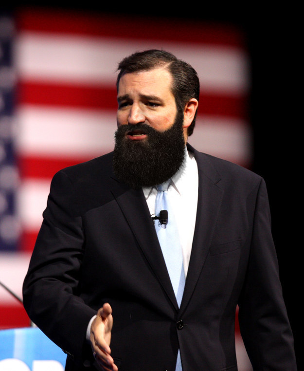 if presidential candidates had beards (2)