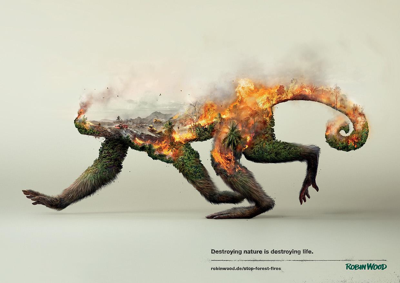 Illustrations Show How Destroying Nature Destroys Life (1)