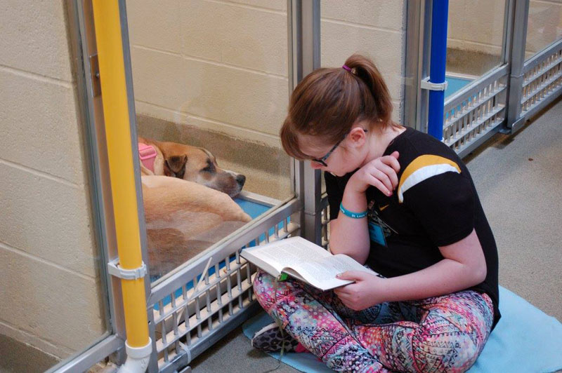 New Program Lets Kids Practice Reading While Shy Shelter Dogs Learn to Socialize (2)