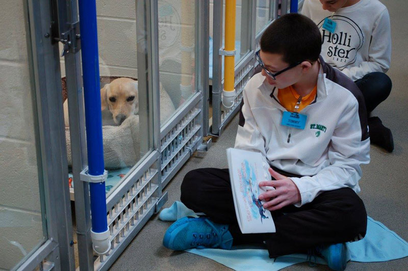 New Program Lets Kids Practice Reading While Shy Shelter Dogs Learn to Socialize (7)