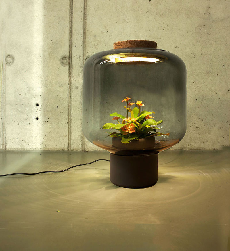 Plant Lamp Can Grow Anywhere and Requires No Human Care studio we love eames (2)