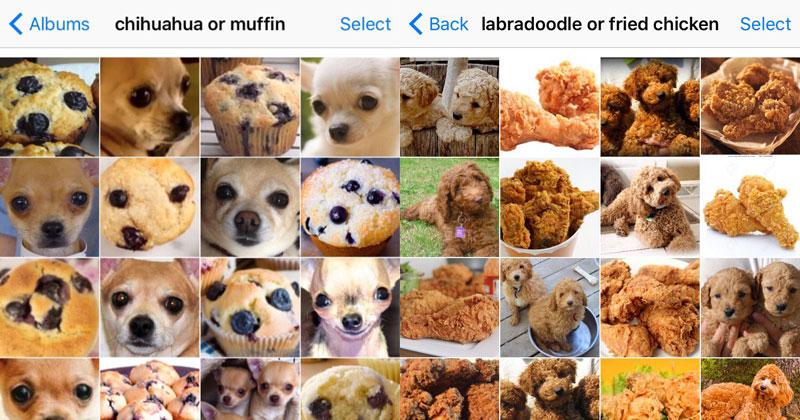 Znalezione obrazy dla zapytania: how to confuse machine learning meme