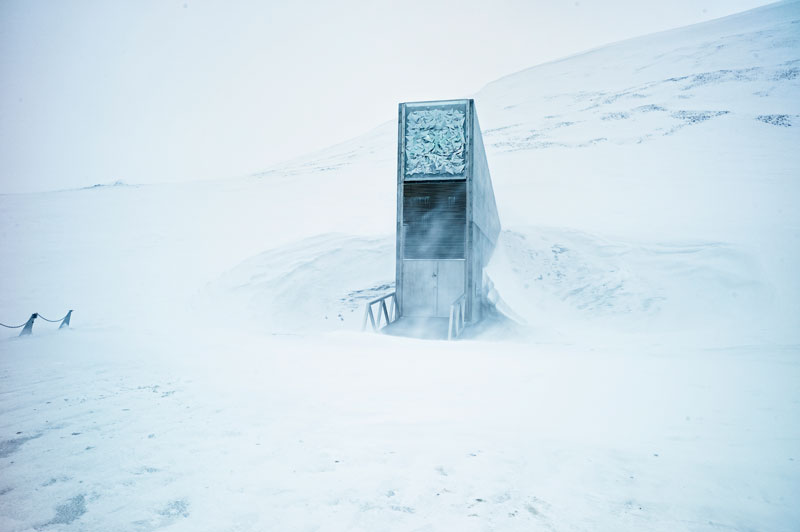 The Doomsday Seed Vault Near the North Pole With Over 850,000 Seed Varieties