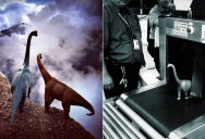Artist Uses Toy Dinosaurs to Add a Creative Twist to his Travel Photos