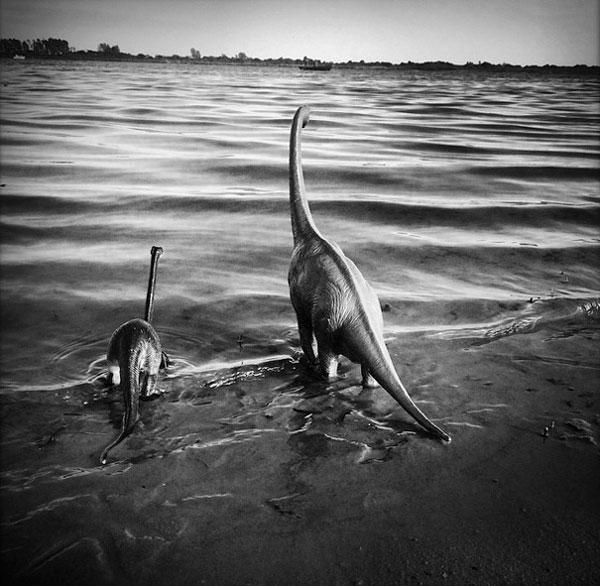 toy dinosaur photo series by jorge saenz (3)