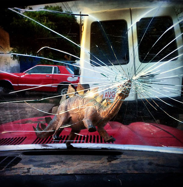 toy dinosaur photo series by jorge saenz (9)