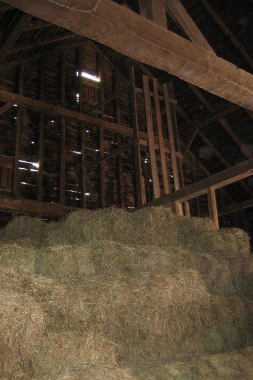 Douglas VanderHorn Architects barn conversion houzz (9)