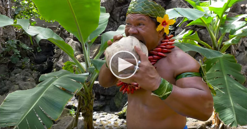 How to Husk a Coconut According to Chief Kap Te'o-Tafiti