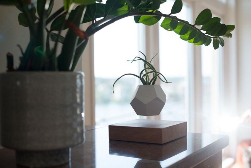 floating levitating planters lyfe (13)