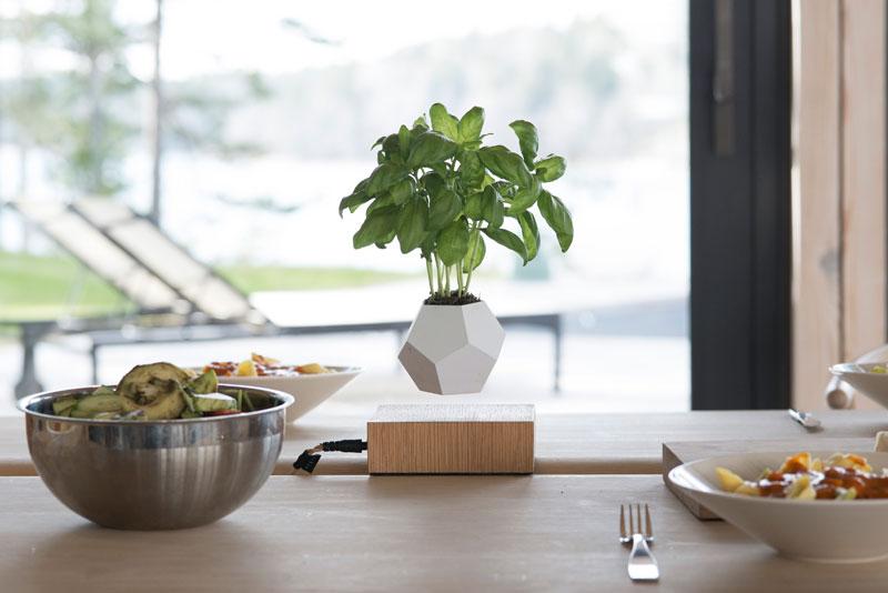 floating levitating planters lyfe (4)