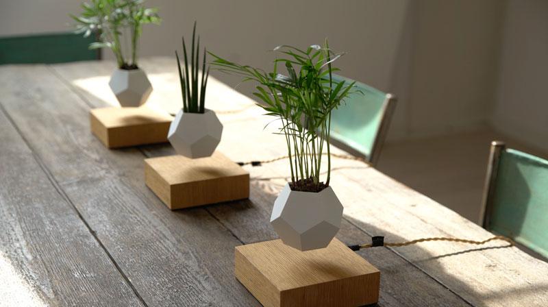 floating levitating planters lyfe (6)