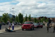 So a Guy on a Horse Just Lassoed a Bike Thief in a Walmart Parking Lot