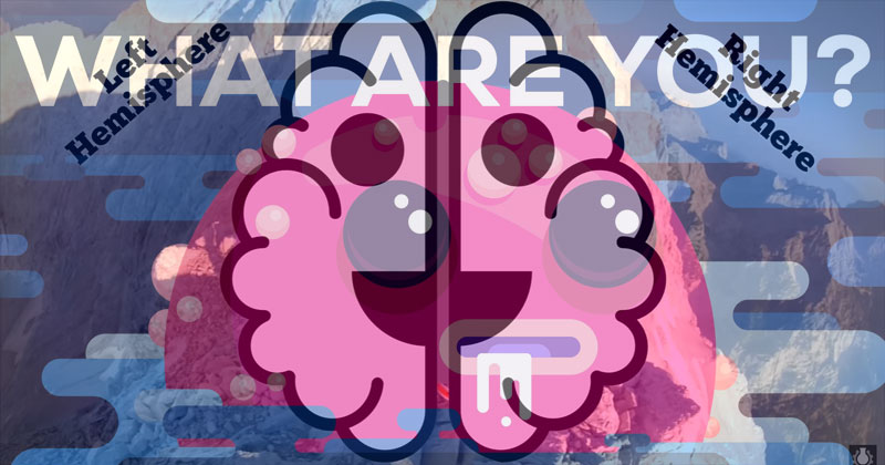 Your Brain is Two and What Makes You, You