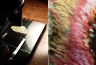Amazing Photos of a Luna Moth's Wing Under a Vintage Microscope