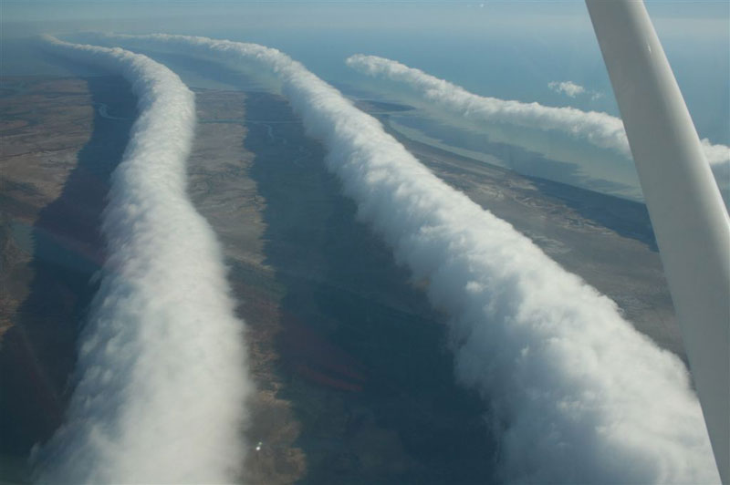 morning glory roll clouds Picture of the Day: Rare Morning Glory Roll Clouds