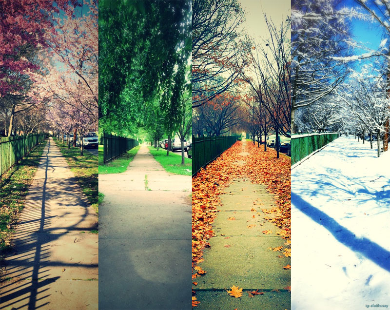 one street four seasons newark nj afatihozay instagram Picture of the Day: One Street, Four Seasons