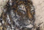Splattered Ink Animal Paintings by Hua Tunan (15 Photos)