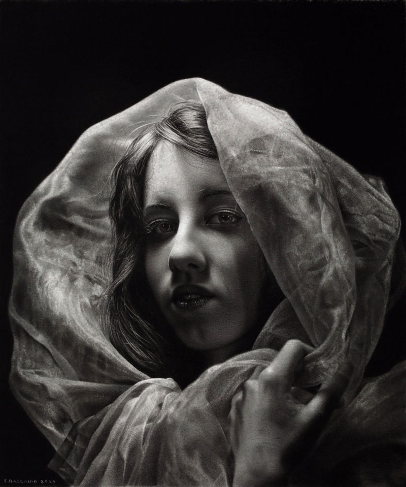 hyperrealistic pencil drawings by Emanuele Dascanio (5)