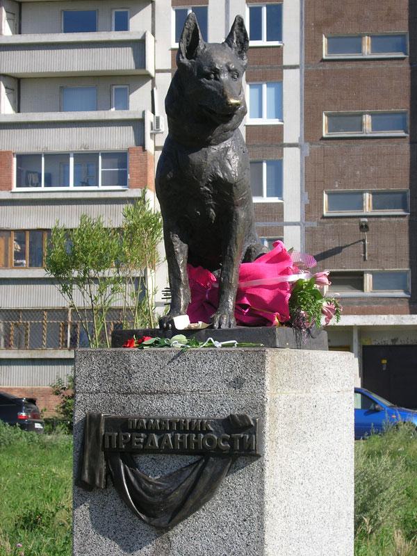 loyal Dog Monument in tolyatti russia (3)