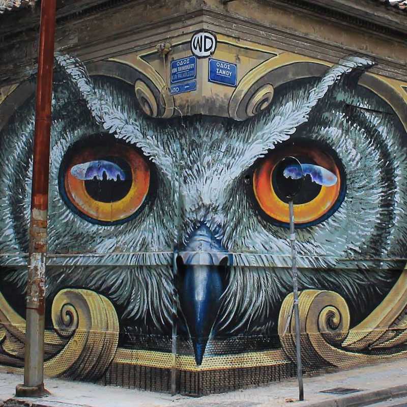owl mural athens greece by wd street art 2016 3 Artist Completely Transforms Intersection with Incredible Owl Mural