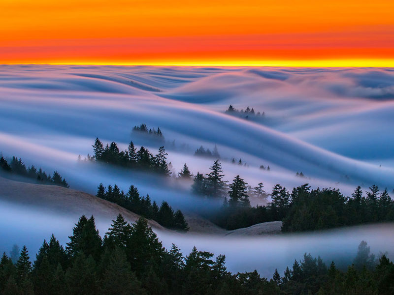 fog waves by nick steinberg 10 Photographer Captures Fog Waves That Look Like Oceans in the Sky