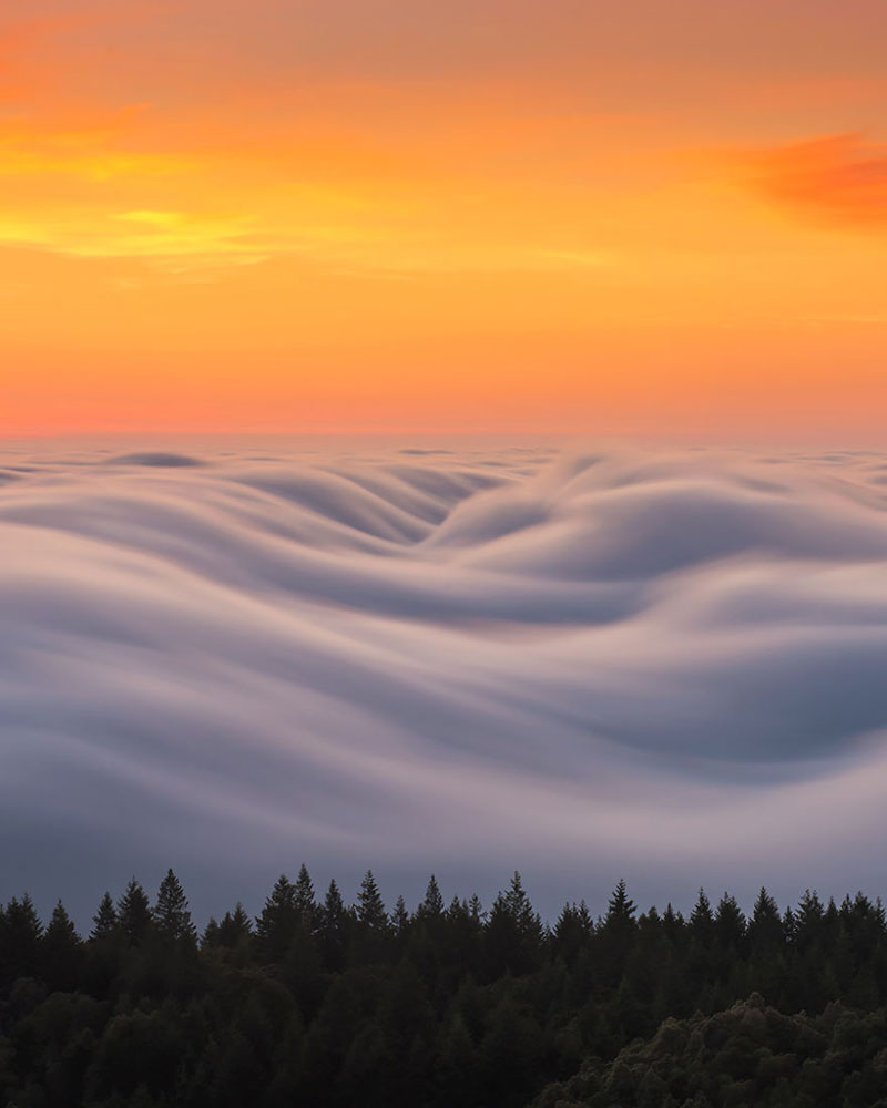 fog waves by nick steinberg 7 Photographer Captures Fog Waves That Look Like Oceans in the Sky