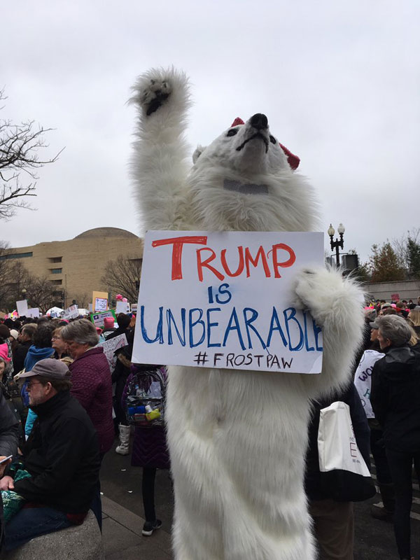 best funny creative signs from womens march 2017 39 50 Amazing Signs from Womens Marches Across the Globe