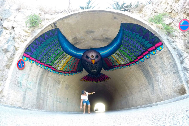 flight of the eagle ibiza spain by spaik Picture of the Day: Flight of the Eagle   Ibiza, Spain