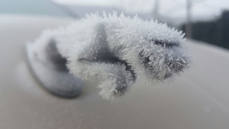 jaguar hood ornament covered in ice Picture of the Day: Ice Jaguar