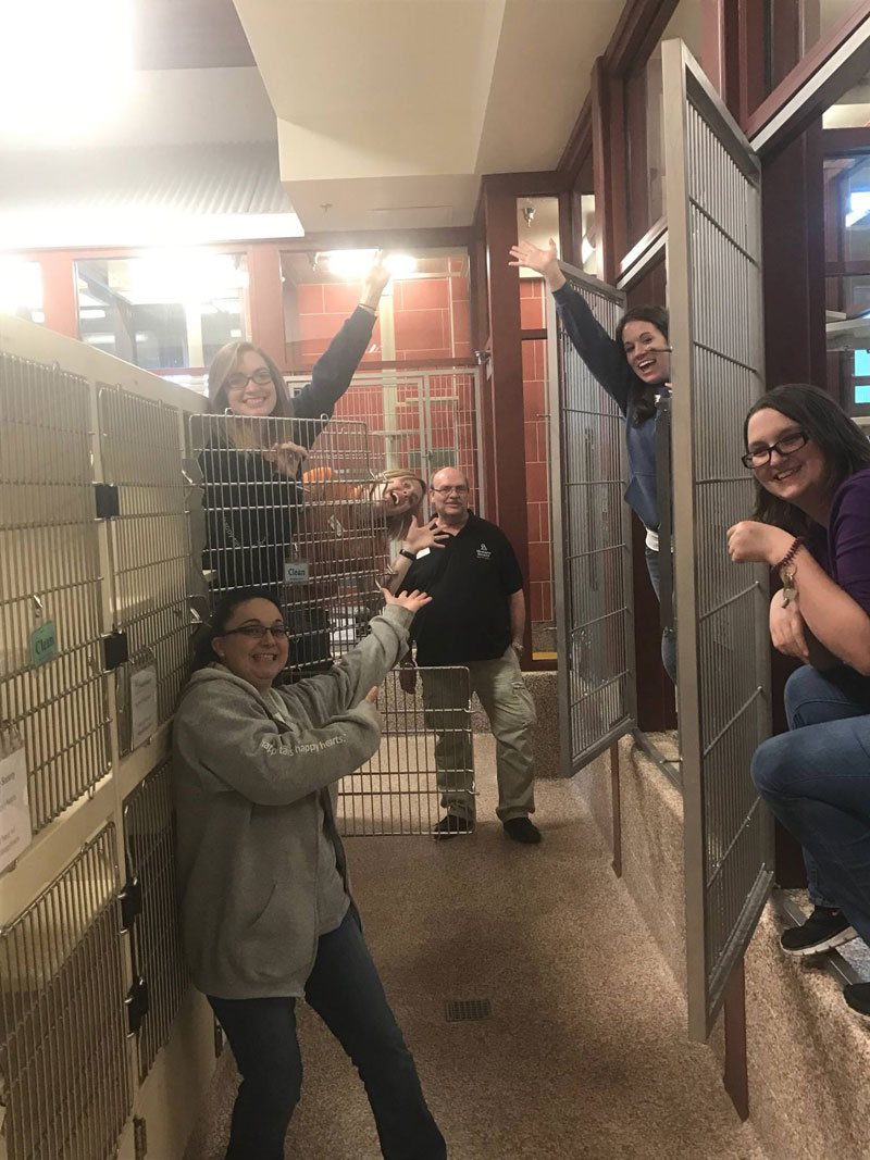 this shelter got every pet adopted and jumped into the empty kennels to celebrate 1 This Shelter Got Every Pet Adopted and Jumped Into the Empty Kennels to Celebrate