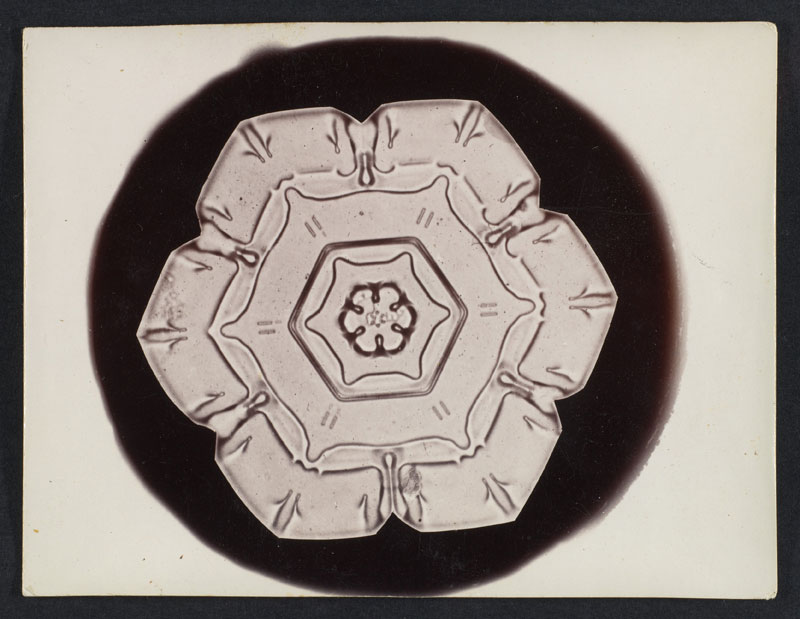 first ever photos of snowflakes by wilson alwyn bentley 1 In 1885 Wilson Bentley Took the First Ever Photographs of Snowflakes (23 Photos)