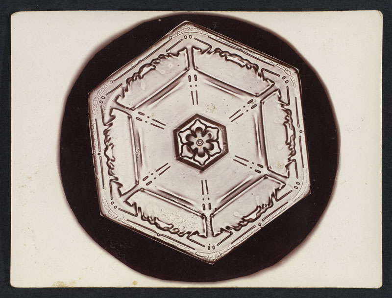 first ever photos of snowflakes by wilson alwyn bentley 12 In 1885 Wilson Bentley Took the First Ever Photographs of Snowflakes (23 Photos)