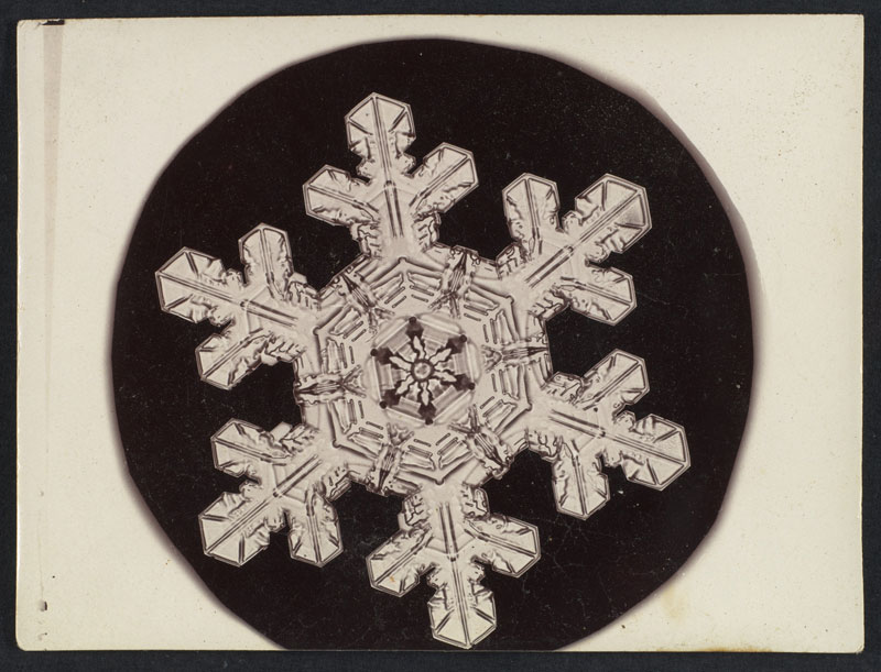 first ever photos of snowflakes by wilson alwyn bentley 14 In 1885 Wilson Bentley Took the First Ever Photographs of Snowflakes (23 Photos)