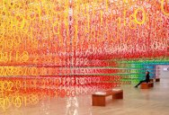 Forest of Numbers by Emmanuelle Moureaux