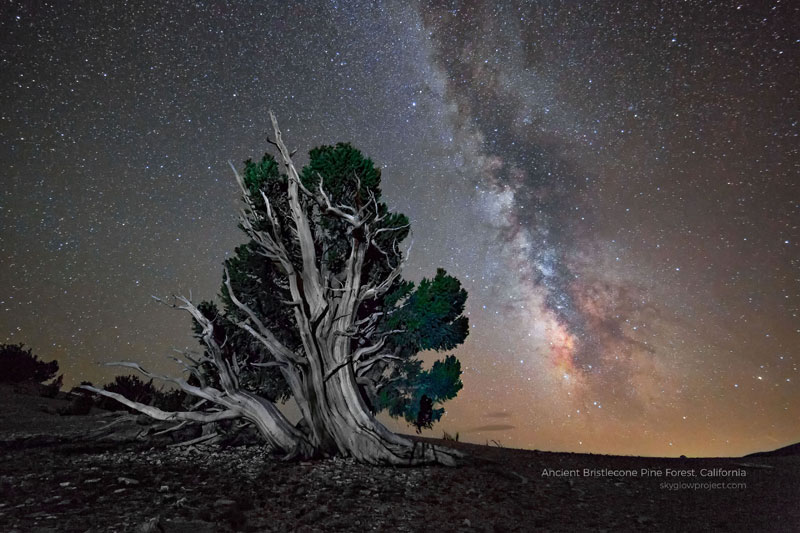 bristlecone 2 skyglow desktop wallpapers In Search of Americas Darkest Skies (24 Photos)