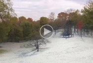 Guy Makes Awesome Timelapse by Flying a Drone on the Same Flight Path for 8 Straight Seasons