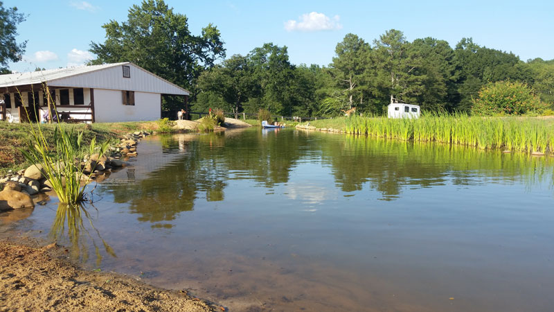 instead of an in ground swimming pool this guy built his own natural swim pond 1 Forget an In Ground Swimming Pool, this Guy Built His Own Natural Swim Pond!