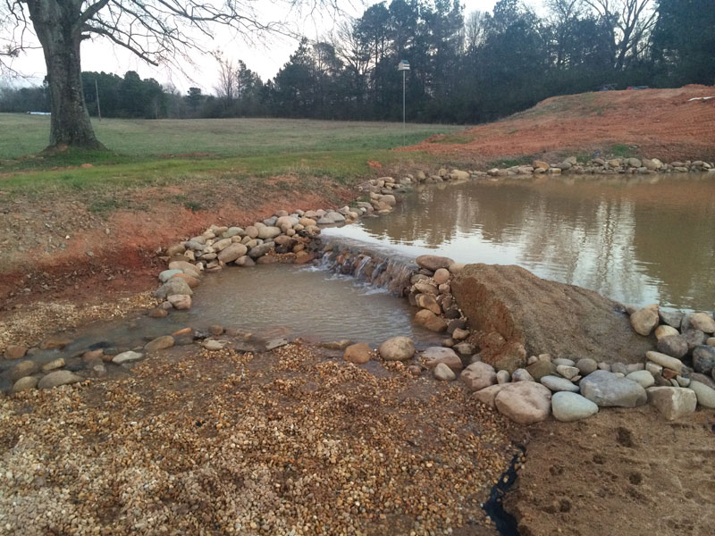 instead of an in ground swimming pool this guy built his own natural swim pond 19 Forget an In Ground Swimming Pool, this Guy Built His Own Natural Swim Pond!
