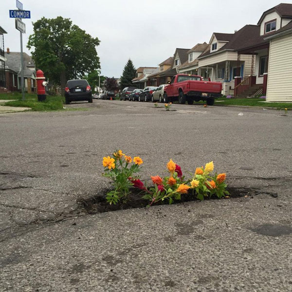 planting flowers in potholes 1 People are Planting Flowers in Potholes Because Cities Arent Fixing Them