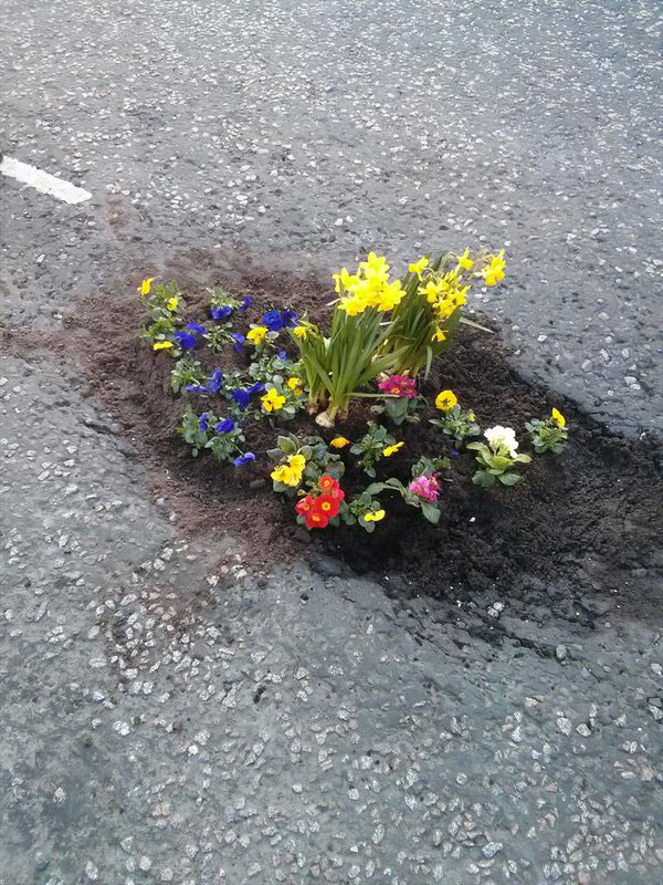 planting flowers in potholes 4 People are Planting Flowers in Potholes Because Cities Arent Fixing Them