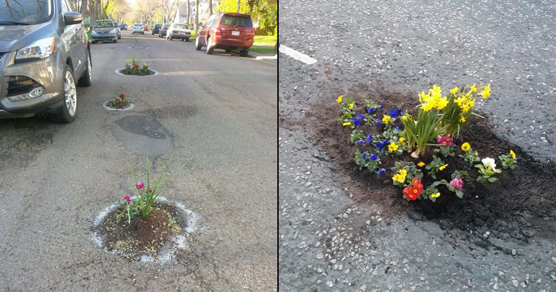 planting flowers in potholes People are Planting Flowers in Potholes Because Cities Arent Fixing Them