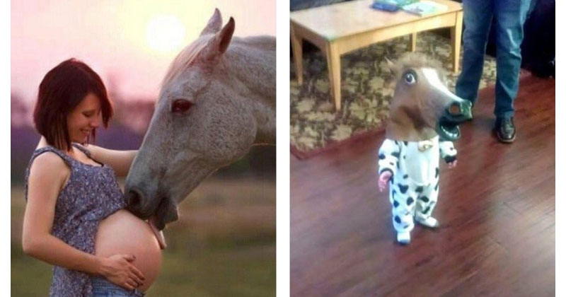 horse head baby The Shirk Report – Volume 420