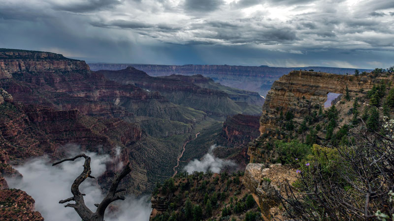 kaibab elegy skyglowproject harun mehmedinovic 8 There was a Full Cloud Inversion at the Grand Canyon and this Guy Got an Unreal Timelapse of It