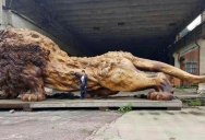 Incredible Wooden Lion Carved from a Single Tree (11 photos)