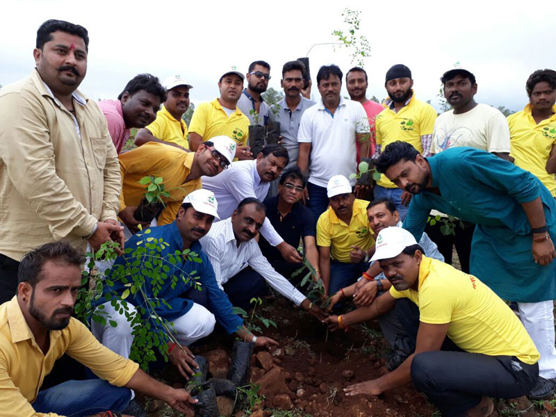 1 5m volunteers in india plant record breaking 66 million trees in 12 hours 3 1.5m Volunteers in India Plant Record Breaking 66 Million Trees in 12 Hours