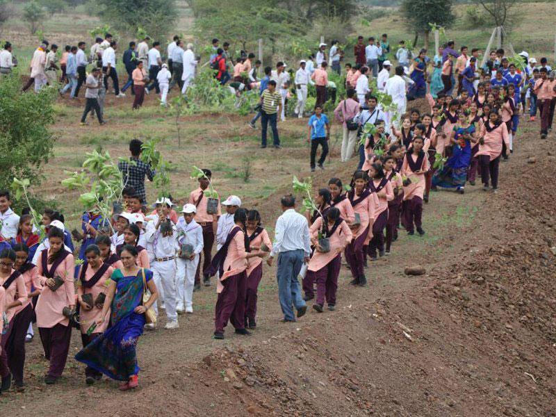 1 5m volunteers in india plant record breaking 66 million trees in 12 hours 4 1.5m Volunteers in India Plant Record Breaking 66 Million Trees in 12 Hours