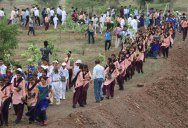 1.5m Volunteers in India Plant Record-Breaking 66 Million Trees in 12 Hours