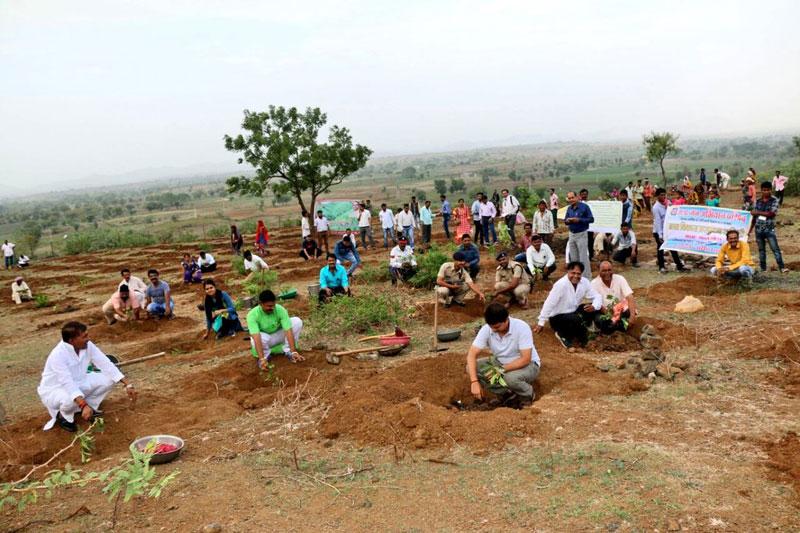 1 5m volunteers in india plant record breaking 66 million trees in 12 hours 7 1.5m Volunteers in India Plant Record Breaking 66 Million Trees in 12 Hours