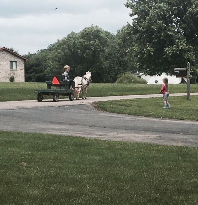 amish boy and girl reddit photo This Guys Cousin Made Friends With a Little Amish Boy. This is Him Stopping By to Say Hi